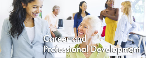 Career and Professional Development Banner